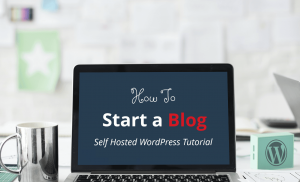 Blog Content For Professional Bloggers