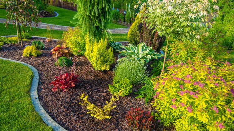 Quick And Easy Landscaping On A Budget
